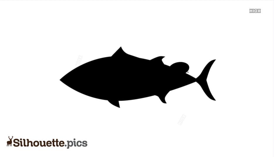 Albacore Fish Silhouette Image