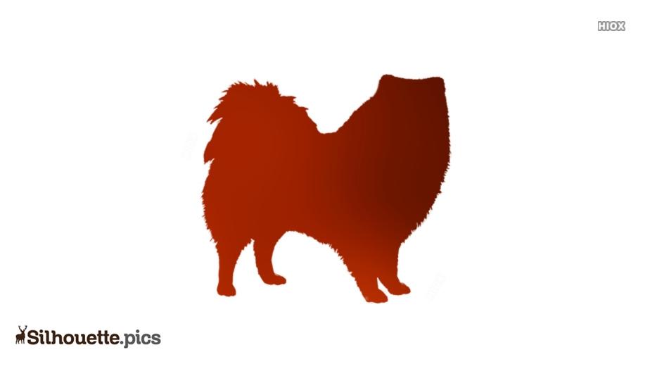 American Eskimo Dog Vector Silhouette