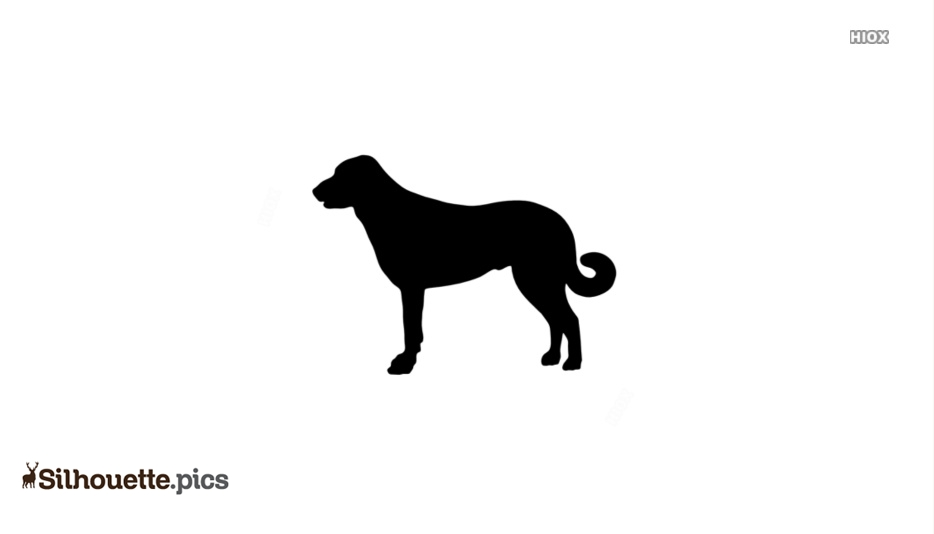Anatolian Shepherd Dog Illustration Silhouettes