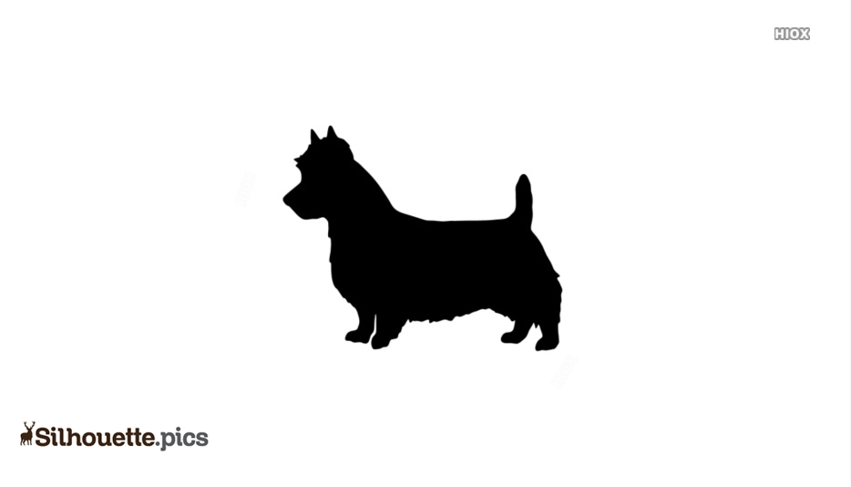 Anatolian Shepherd Dog Image Silhouette