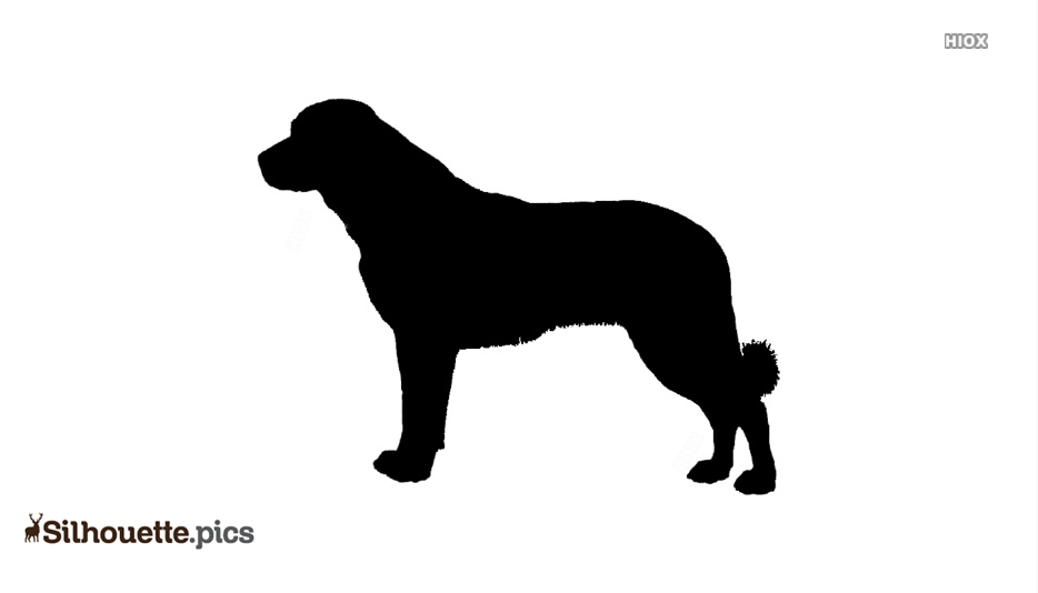 Anatolian Shepherd Dog Silhouette