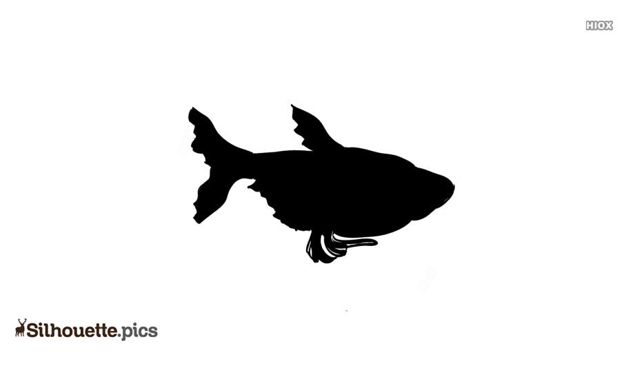 Angel Fish Vector Silhouette Vector
