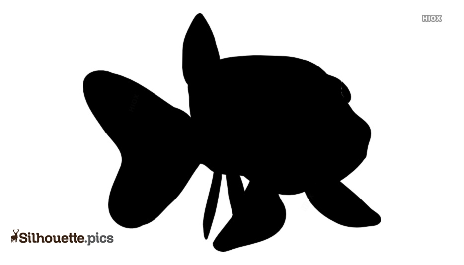 Animated Fish Silhouette Vector