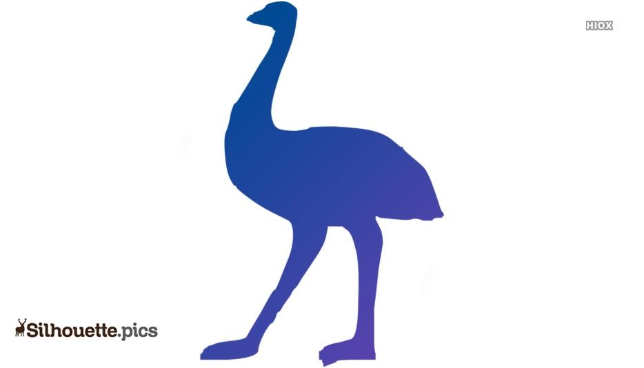 Australian Emu Silhouette Vector