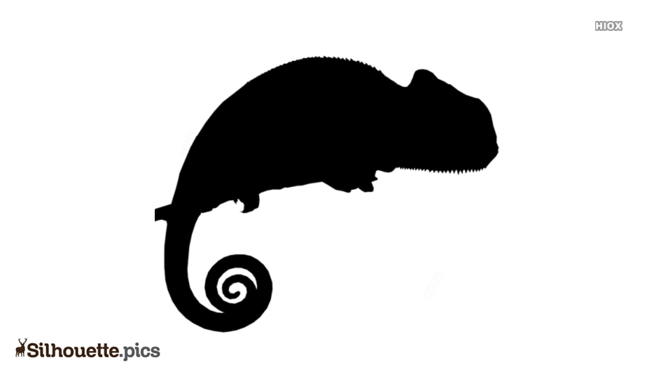 Reptile Silhouette Vector Images