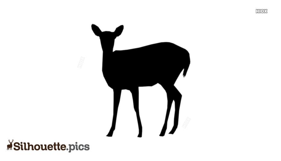 Baby Girl Deer Silhouette