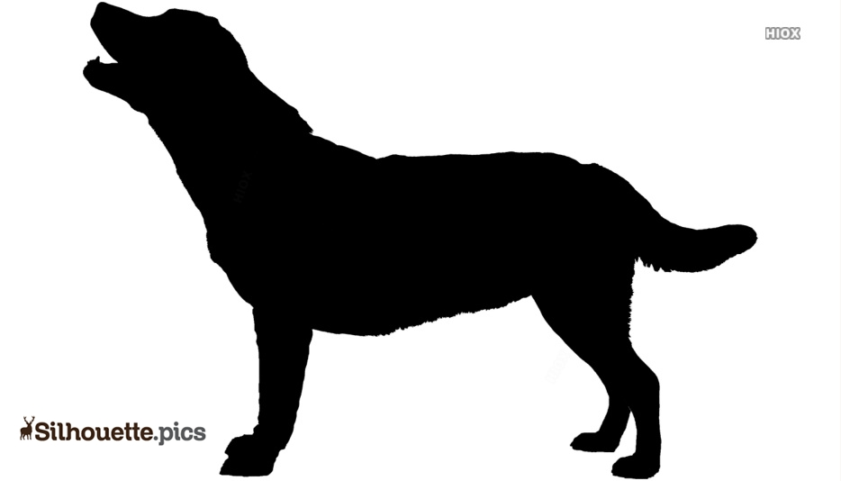 Barking Dog Silhouette Illustration