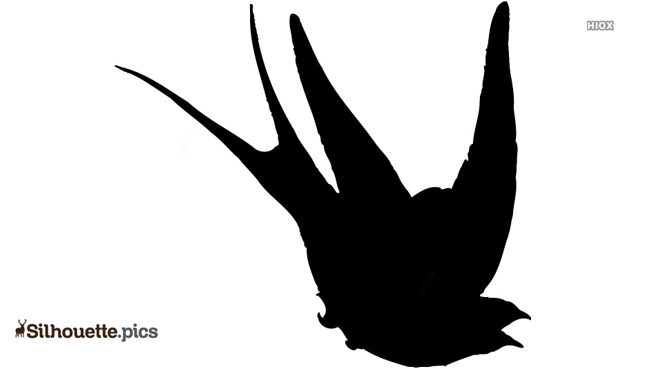 Barn Swallow Silhouette Vector Image