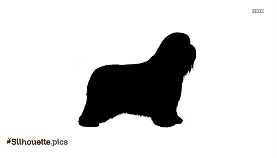 Bearded Collie Dog Breeds Clipart Silhouette Image