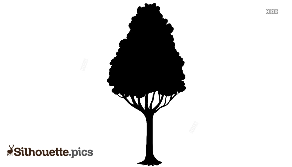 Beautiful Big Tree Silhouette, Clipart
