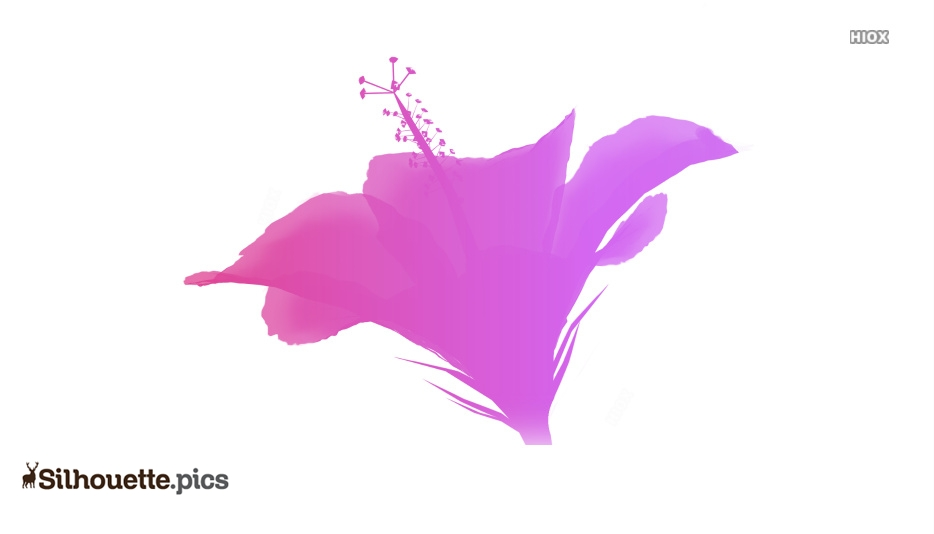 Beautiful Hibiscus Flower Clipart Silhouette