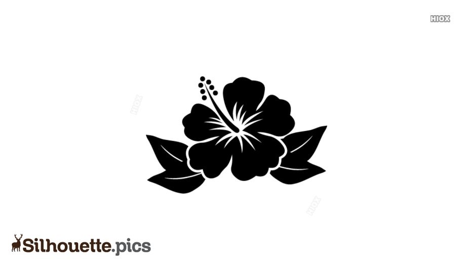 Flower Silhouette Images, Pictures