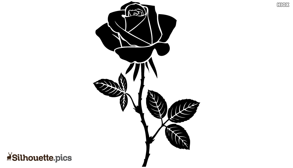 Rose Silhouette Images