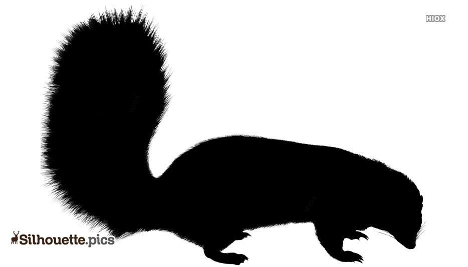 Beautiful Skunk Clipart Silhouette