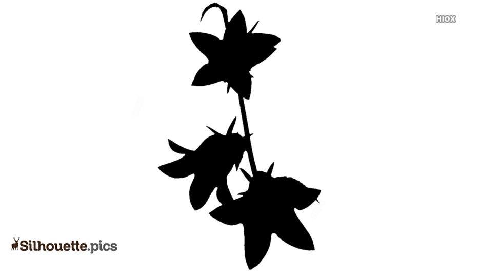 Bell Flowers Silhouette Vector And Graphics