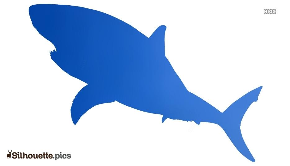 Big Fish Silhouette Image