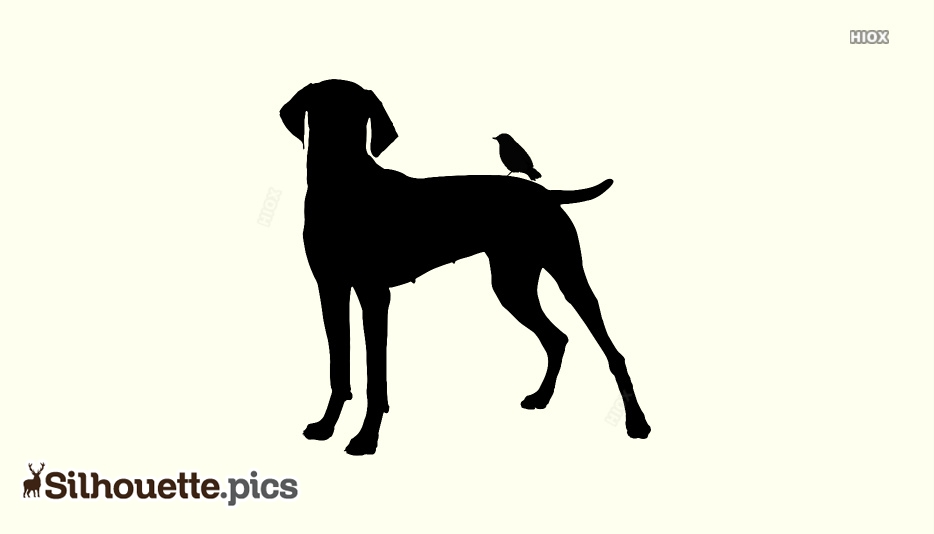 Bird Dog Silhouette