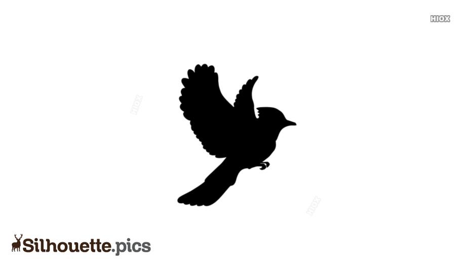 Bird Flying Silhouette