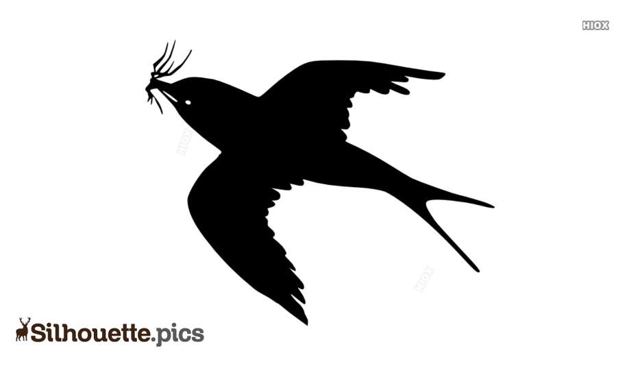 Bird Flying With Insect Silhouette