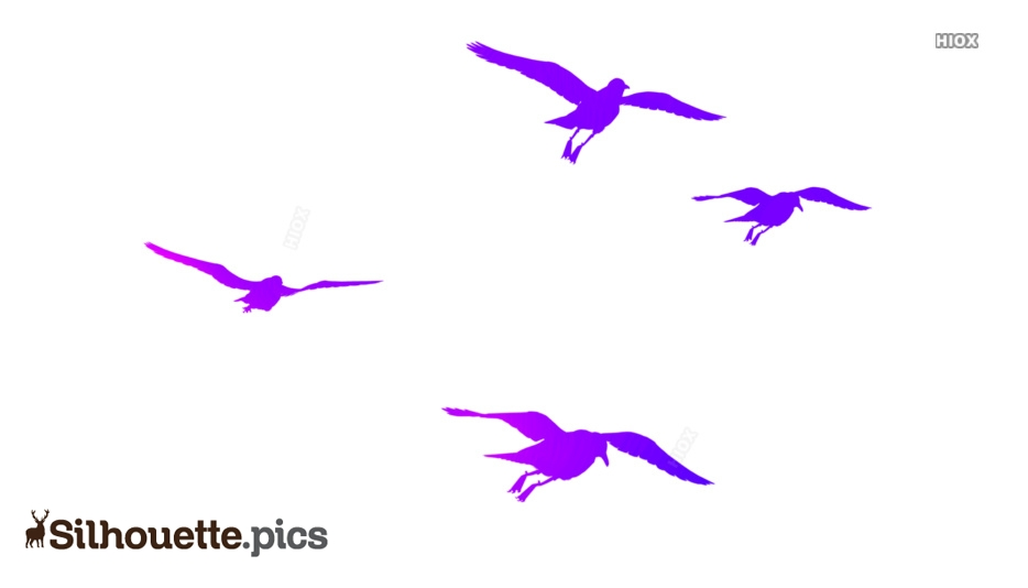 Birds Flying Silhouette Png