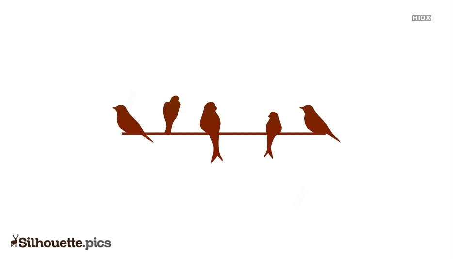 Birds On A Wire Image Silhouette