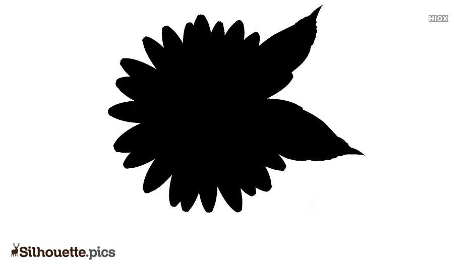 Black And White Daisy Flower Silhouette