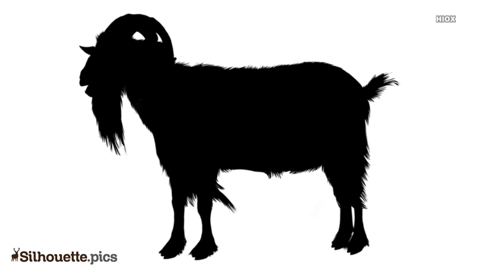 Black And White Goat Silhouette