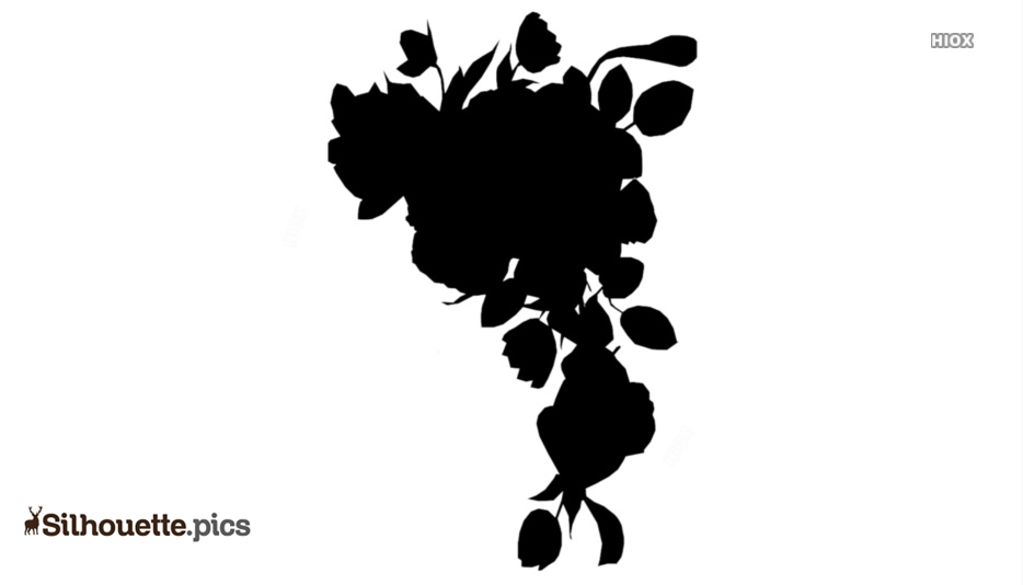 Black And White Hawthorn Flowers Silhouette