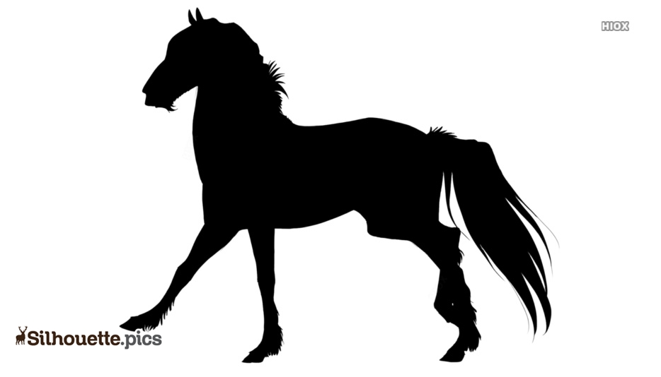 Black And White Horse Running Silhouette Pic