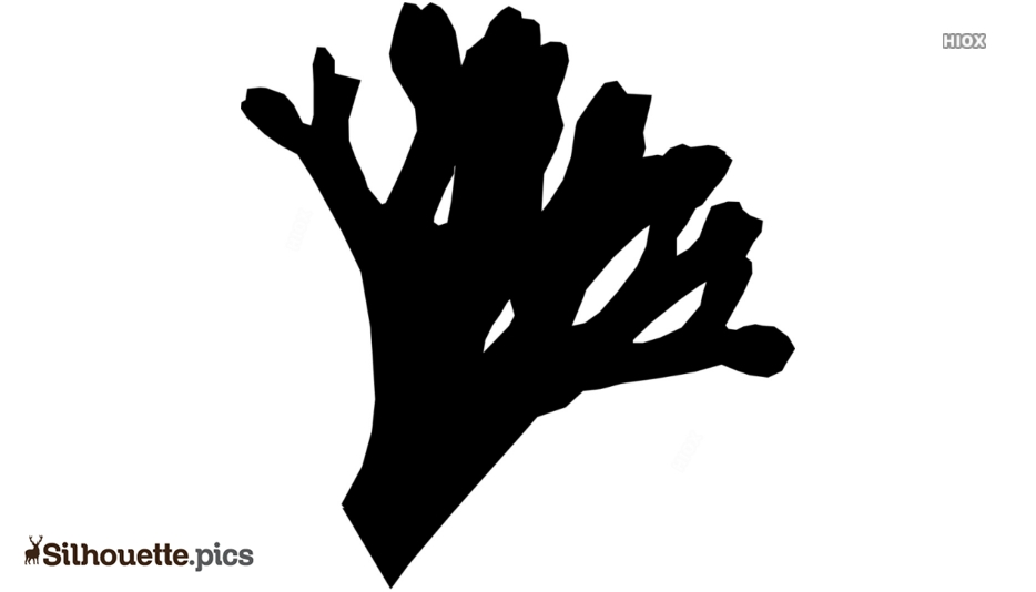 Black And White Seaweed Silhouette