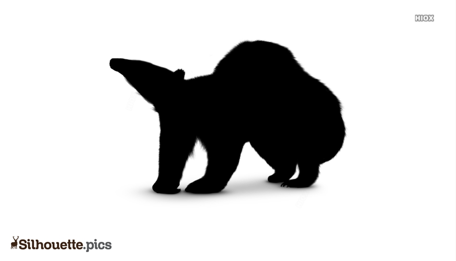 Black Animals With Long Claw Silhouette Image