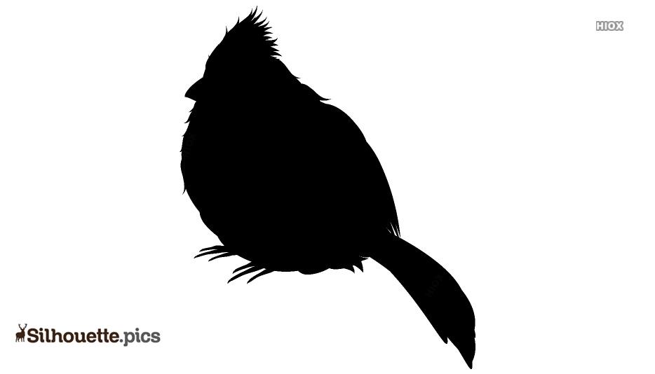 Black Bird Silhouette Clipart