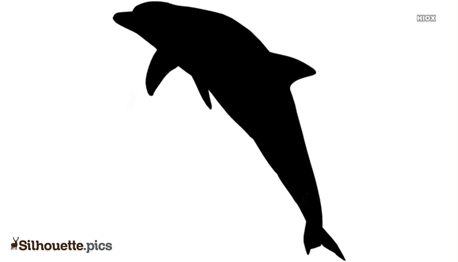 Black Dolphin Fish Silhouette Image