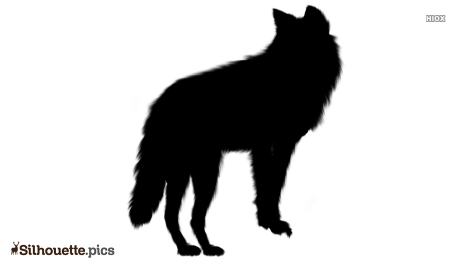 Black Free Gray Wolf Silhouette Image