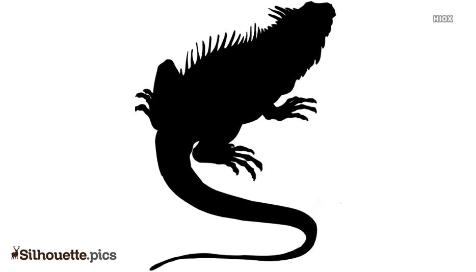 Black Lizard Silhouette Picture