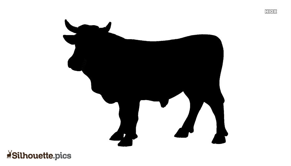 Black OX Vector Silhouette Drawing