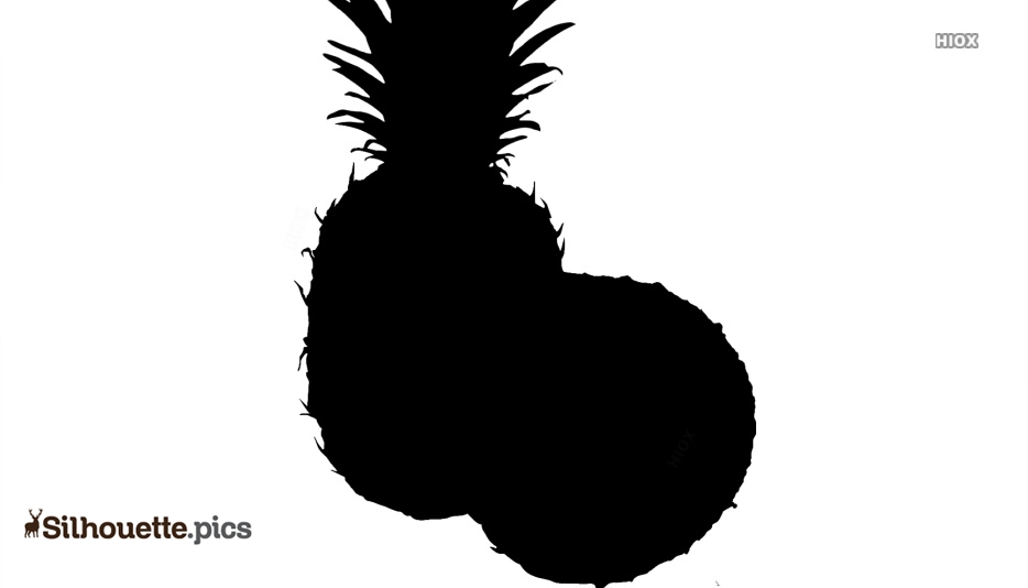 Pineapple Silhouette Images