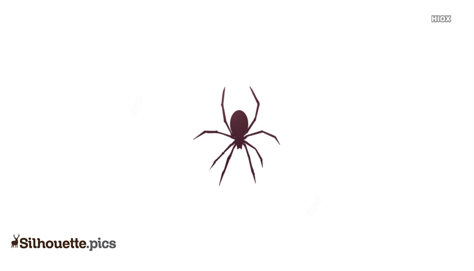 Black Widow Spider Vector Silhouette