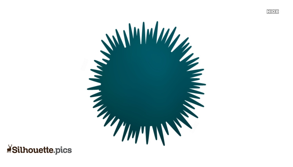 Blue Sea Urchin Silhouette