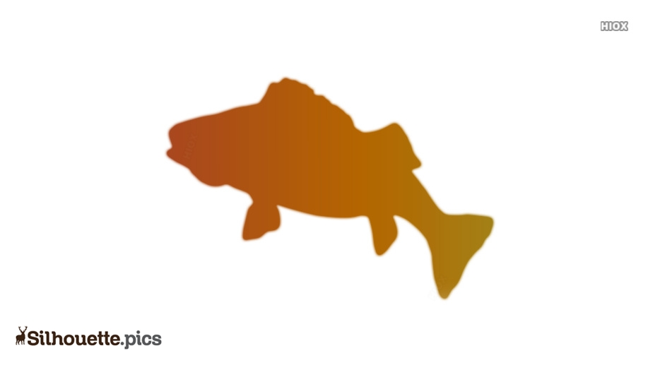 Buffalo Fish Silhouette Clip Art