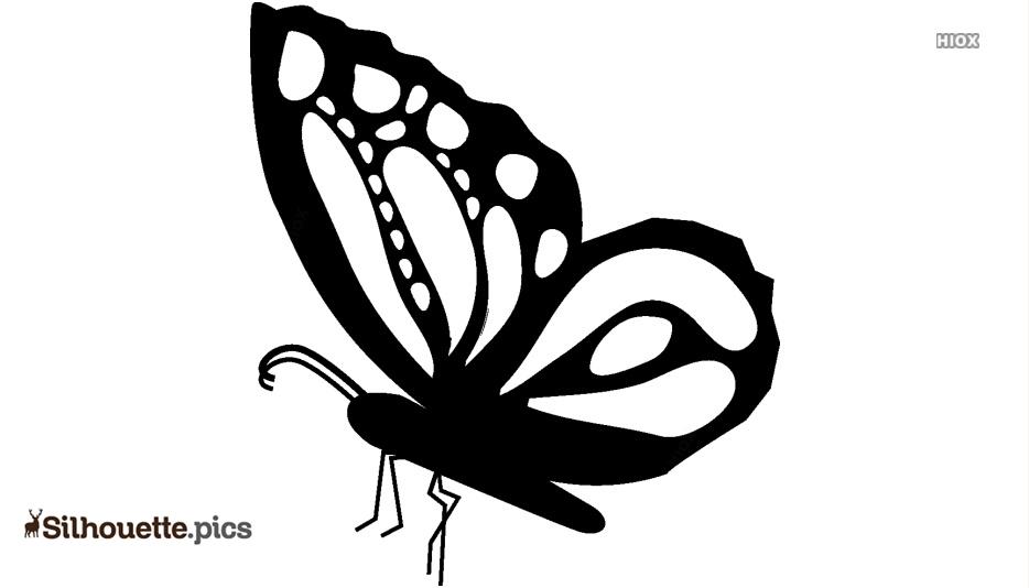 Butterfly Beautiful Side View Shape Silhouette