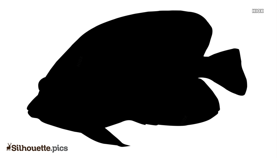 Butterfly Fish Silhouette Clip Art