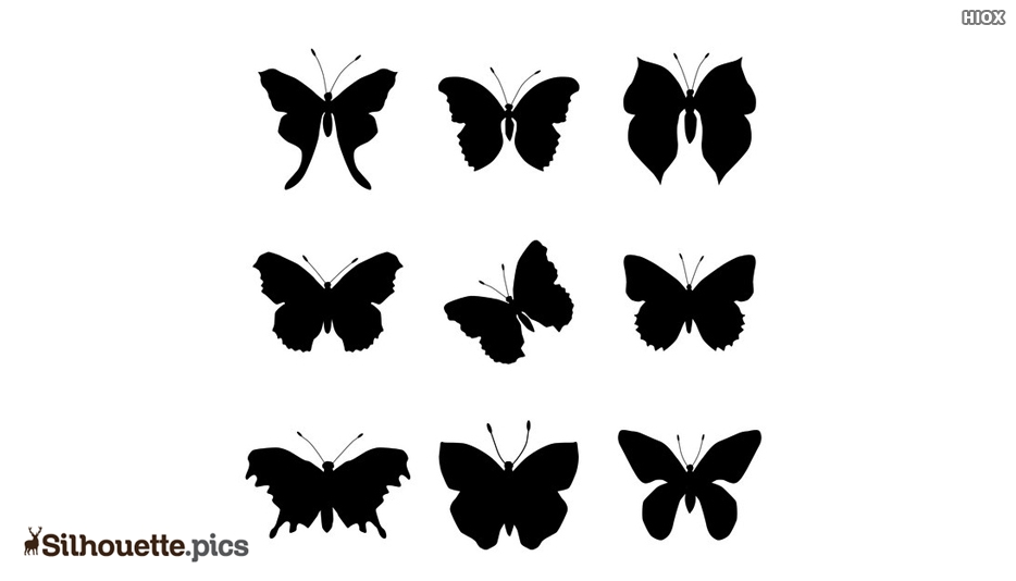 Insect Silhouettes Vector Art