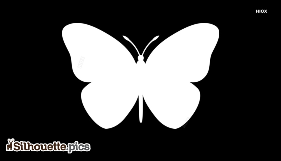 Butterfly Silhouette Black and White