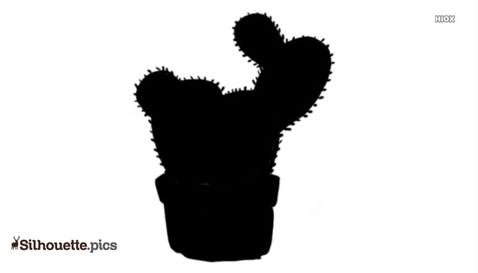Cactus Silhouette Images