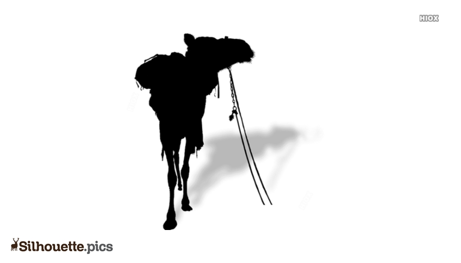 Camel Carrying Silhouette Image And Vector