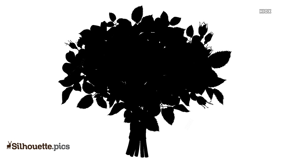 Carnation Flower Drawing Silhouette Free Vector Art