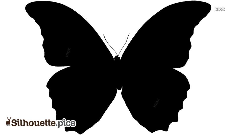 Cartoon Butterfly Silhouette