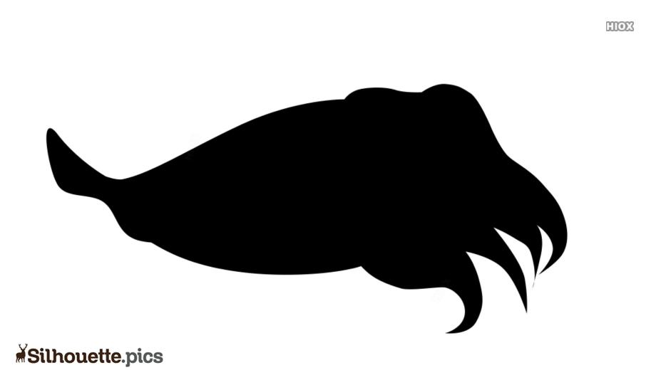 Cartoon Cuttlefish Silhouette Drawing