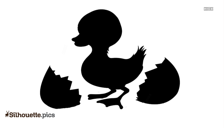Duck Egg Silhouette Images